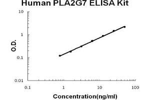 Image no. 1 for Lipoprotein-Associated phospholipase A2 (Lp-PLA2) ELISA Kit (ABIN5692232)