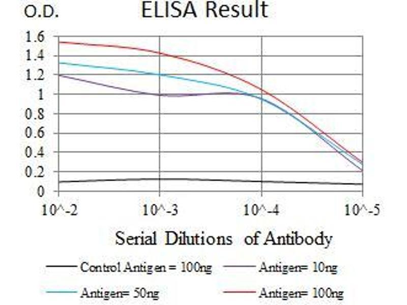 ELISA image for anti-TUBB2A antibody (Tubulin, beta 2A) (AA 25-187) (ABIN1724832)