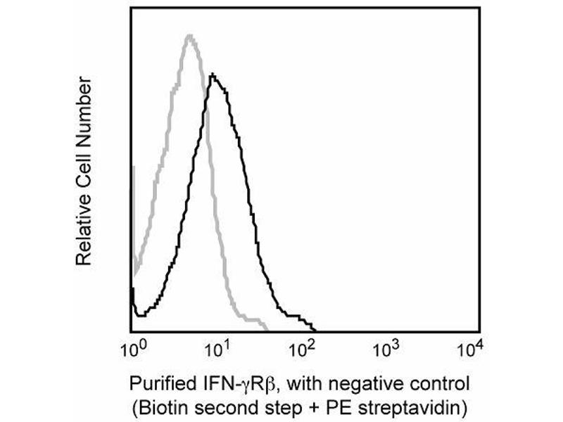 Flow Cytometry (FACS) image for anti-IFN-gamma Receptor (Chain beta) antibody (ABIN967655)