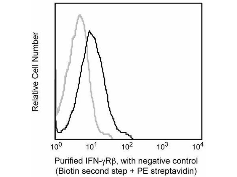 Flow Cytometry (FACS) image for anti-IFN-gamma Receptor (Chain beta) antibody (ABIN967655)
