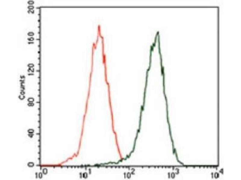 Flow Cytometry (FACS) image for anti-Sequestosome 1 (SQSTM1) (AA 100-400) antibody (ABIN4343162)