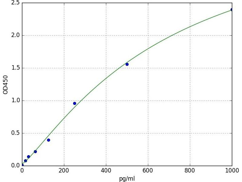 Calcium/calmodulin-Dependent Protein Kinase (CaM Kinase) II beta (CAMK2B) ELISA Kit