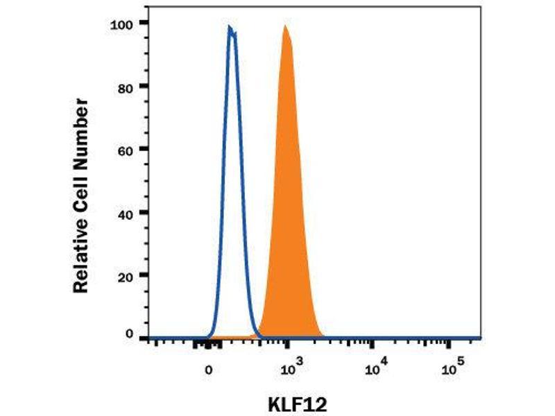 Flow Cytometry (FACS) image for anti-KLF12 antibody (Kruppel-Like Factor 12) (AA 2-402) (Alexa Fluor 594) (ABIN4896113)
