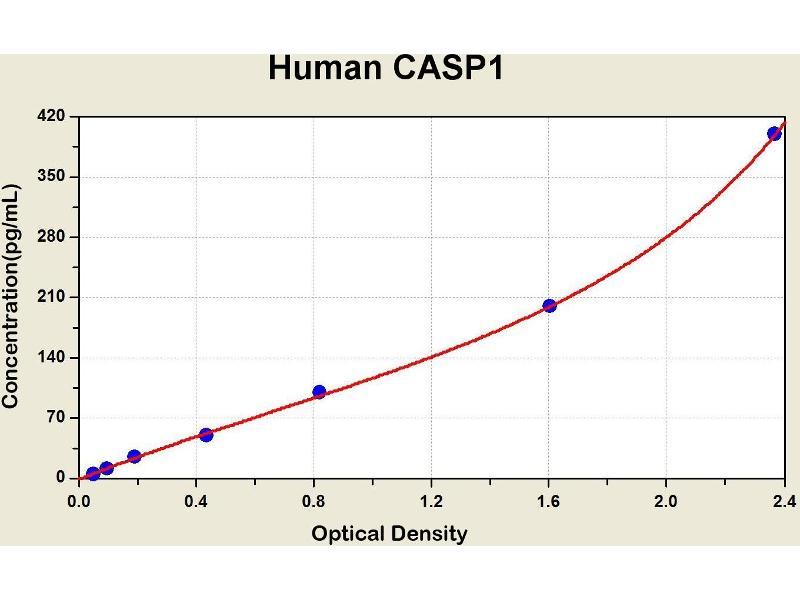 Caspase 1 (CASP1) ELISA Kit