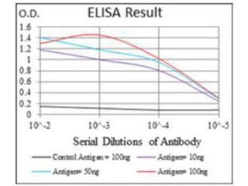 ELISA image for anti-Fas Ligand (TNF Superfamily, Member 6) (FASL) antibody (ABIN4271438)