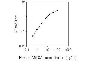 ELISA image for Adhesion Molecule, Interacts with CXADR Antigen 1 (AMICA1) ELISA Kit (ABIN2702816)