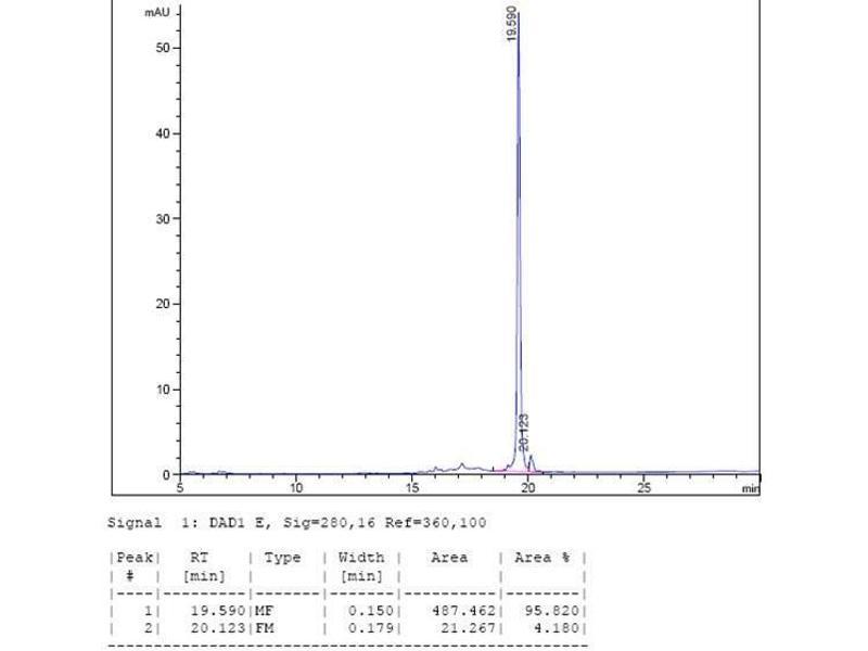 Image no. 3 for Interleukin 10 (IL10) (AA 19-178) (Active) protein (ABIN2018051)