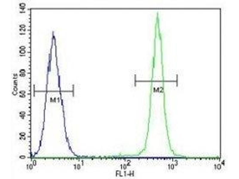 Flow Cytometry (FACS) image for anti-Insulin-Like Growth Factor 1 (IGF1) (AA 115-144) antibody (ABIN3031342)
