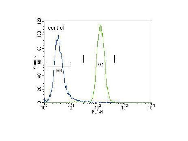 Flow Cytometry (FACS) image for anti-UDP Glucuronosyltransferase 2 Family, Polypeptide B15 (UGT2B15) (AA 156-185), (Center) antibody (ABIN656309)