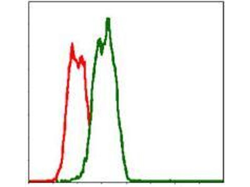 Flow Cytometry (FACS) image for anti-Fas (TNF Receptor Superfamily, Member 6) (FAS) antibody (ABIN969519)