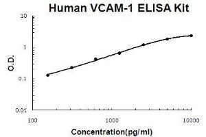Image no. 1 for Vascular Cell Adhesion Molecule 1 (VCAM1) ELISA Kit (ABIN411367)