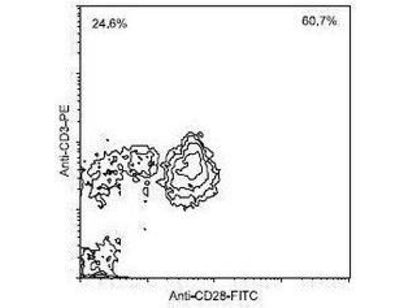 Flow Cytometry (FACS) image for anti-CD28 (CD28) antibody (PE) (ABIN440252)