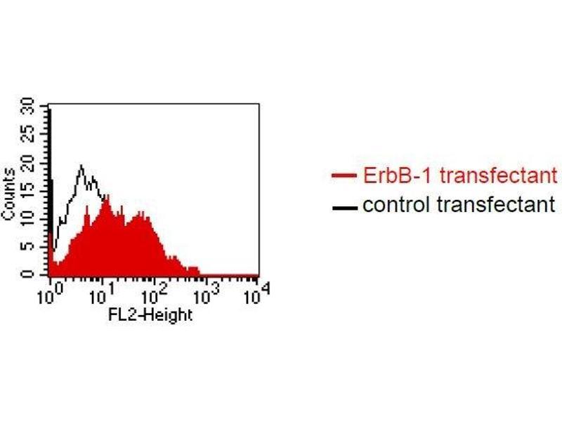 Flow Cytometry (FACS) image for anti-Epidermal Growth Factor Receptor (EGFR) antibody (ABIN1381744)