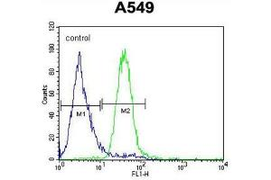 Flow Cytometry (FACS) image for anti-C5AR1 antibody (Complement Component 5a Receptor 1) (AA 178-205) (ABIN951423)
