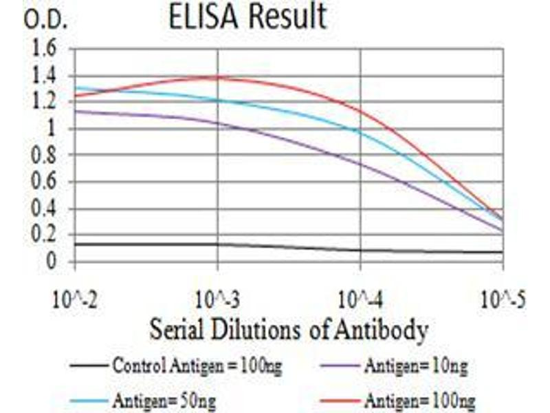 ELISA image for anti-Complement Component 1, Q Subcomponent, A Chain (C1QA) (AA 23-167) antibody (ABIN4880584)