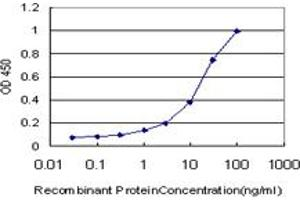 Image no. 2 for anti-Early Growth Response 1 (EGR1) (AA 444-543) antibody (ABIN515188)