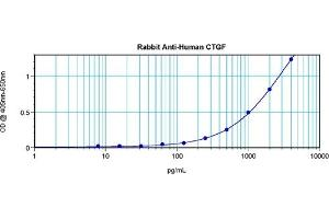 Image no. 2 for anti-Connective Tissue Growth Factor (CTGF) antibody (ABIN181700)