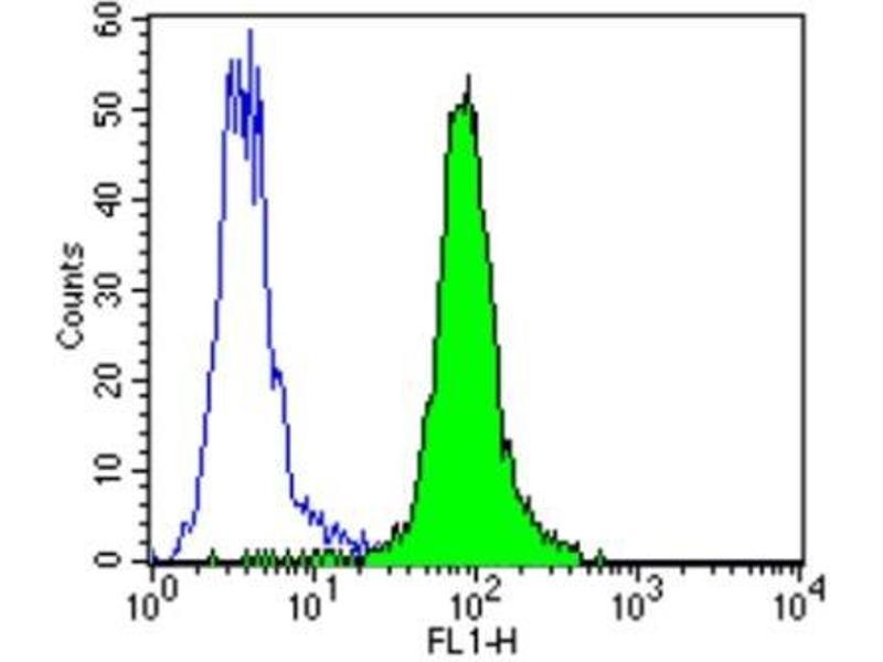 Flow Cytometry (FACS) image for anti-ERBB4 antibody (V-Erb-A erythroblastic Leukemia Viral Oncogene Homolog 4 (Avian)) (ABIN267015)