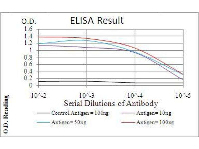 ELISA image for anti-Phospholipase C gamma 2 (PLCG2) (AA 826-985) antibody (ABIN5542311)