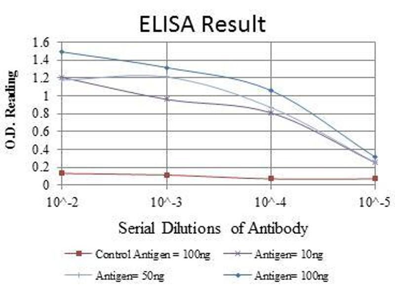 ELISA image for anti-V-Crk Sarcoma Virus CT10 Oncogene Homolog (Avian)-Like (CRKL) antibody (ABIN969064)