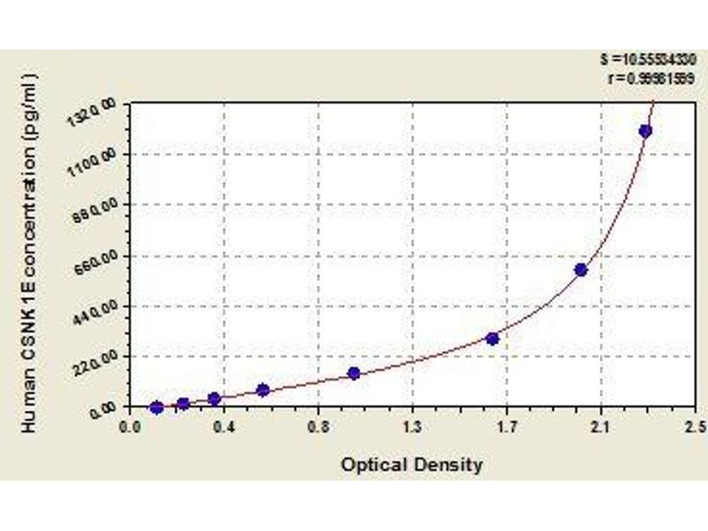 Casein Kinase 1, epsilon (CSNK1E) ELISA Kit