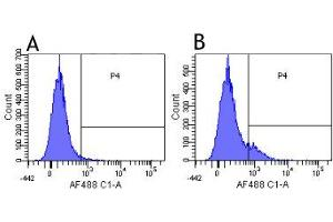 Flow Cytometry (FACS) image for anti-Colony Stimulating Factor 2 Receptor, Beta, Low-Affinity (Granulocyte-Macrophage) (CSF2RB) antibody (ABIN5668177)