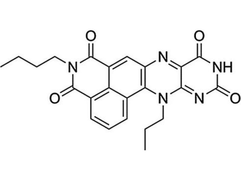 Molecule (M) image for NpFR1 (ABIN5021889)