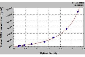 Image no. 1 for Bromodomain Containing 4 (BRD4) ELISA Kit (ABIN6974896)
