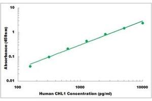 Image no. 1 for Cell Adhesion Molecule with Homology To L1CAM (Close Homolog of L1) (CHL1) ELISA Kit (ABIN5526880)