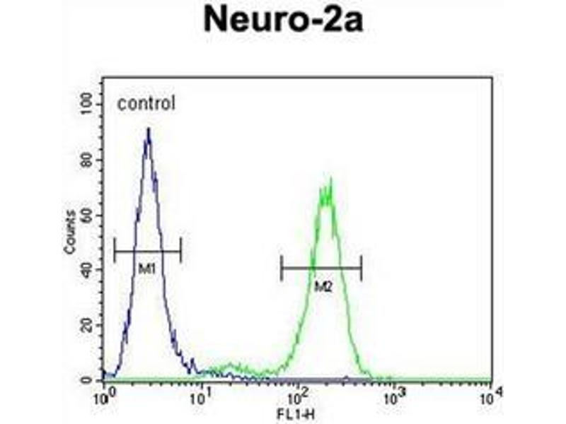 Flow Cytometry (FACS) image for anti-DEAD/H (Asp-Glu-Ala-Asp/His) Box Polypeptide 11 (DDX11) (AA 663-691), (Middle Region) antibody (ABIN951862)