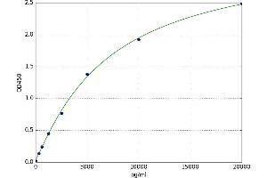 Image no. 1 for Dopamine Receptor D3 (DRD3) ELISA Kit (ABIN5520445)