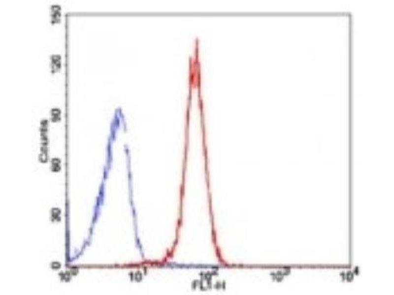 Flow Cytometry (FACS) image for anti-TBP-Like 1 (TBPL1) antibody (ABIN252470)