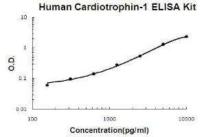 Image no. 1 for Cardiotrophin 1 (CTF1) ELISA Kit (ABIN6720095)