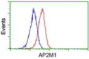 Image no. 5 for anti-Adaptor-Related Protein Complex 2, mu 1 Subunit (AP2M1) (AA 97-383) antibody (ABIN1491720)