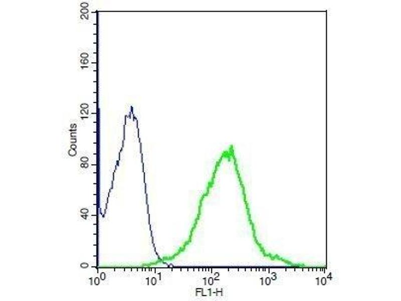 Flow Cytometry (FACS) image for anti-Growth Hormone Receptor antibody (GHR) (AA 290-340) (ABIN671481)