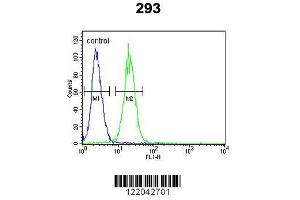 Flow Cytometry (FACS) image for anti-Potassium Voltage-Gated Channel, KQT-Like Subfamily, Member 1 (KCNQ1) (AA 513-540), (Center) antibody (ABIN652891)