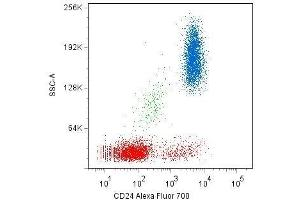 Flow Cytometry (FACS) image for anti-CD24 Molecule (CD24) antibody (APC) (ABIN2749227)