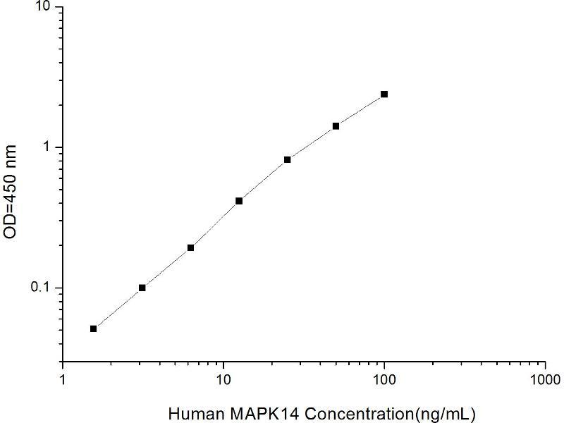 Mitogen-Activated Protein Kinase 14 (MAPK14) ELISA Kit (2)