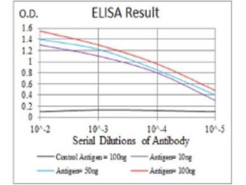 ELISA image for anti-ERBB4 antibody (V-Erb-A erythroblastic Leukemia Viral Oncogene Homolog 4 (Avian)) (ABIN4309326)