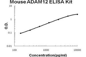 Image no. 1 for ADAM Metallopeptidase Domain 12 (ADAM12) ELISA Kit (ABIN1889434)