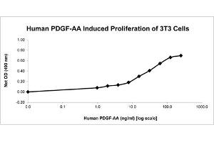 Image no. 1 for Platelet-Derived Growth Factor alpha Polypeptide (PDGFA) protein (ABIN6700381)