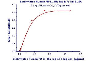 Image no. 2 for CD274 Molecule (CD274) (AA 19-238) (Active) protein (Fc Tag,AVI tag,Biotin,His tag) (ABIN2181597)