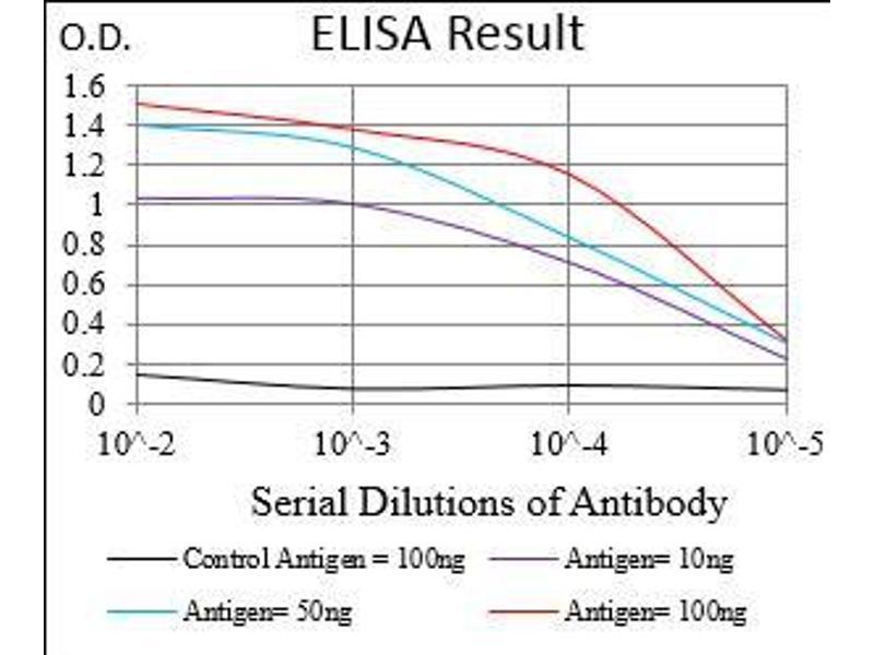 ELISA image for anti-CD11b antibody (Integrin alpha M) (AA 623-728) (ABIN1724905)