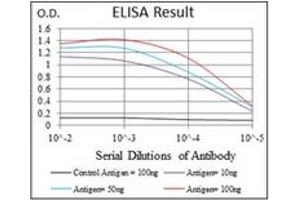 ELISA image for anti-PIK3CA antibody (Phosphoinositide-3-Kinase, Catalytic, alpha Polypeptide) (ABIN1108651)