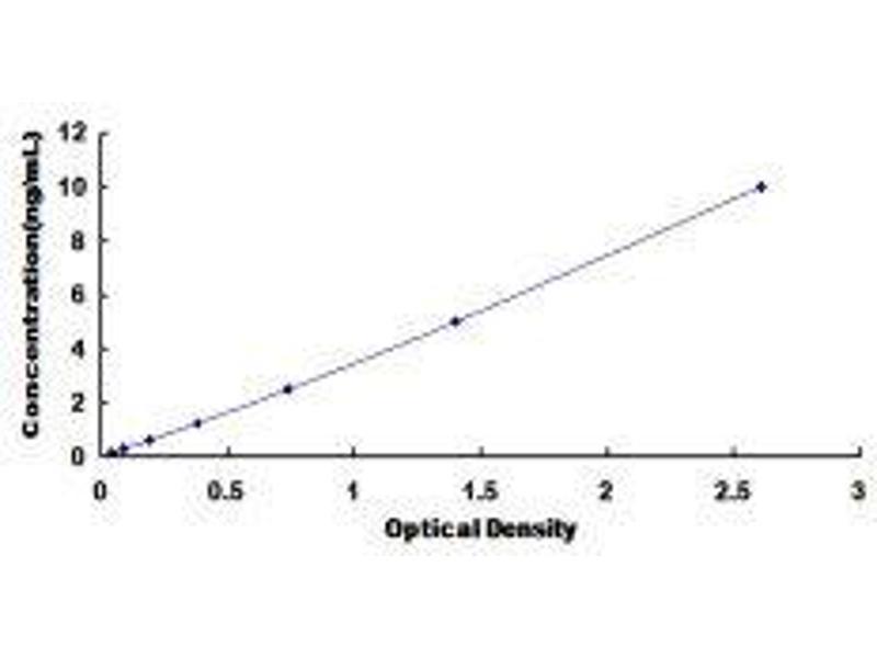 Retinoic Acid Receptor, gamma (RARG) ELISA Kit