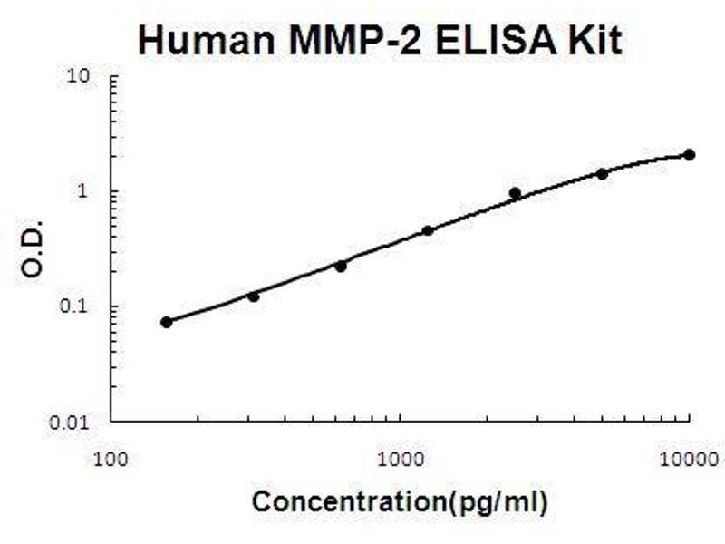 Matrix Metalloproteinase 2 (MMP2) ELISA Kit