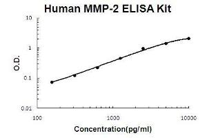 Image no. 1 for Matrix Metalloproteinase 2 (MMP2) ELISA Kit (ABIN411328)