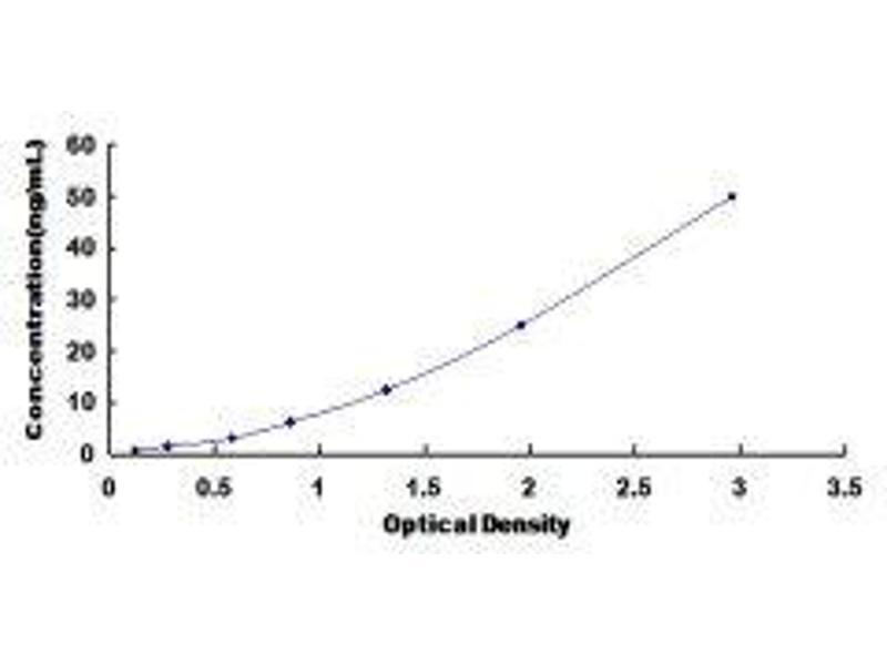 IMP (Inosine 5'-Monophosphate) Dehydrogenase 2 (IMPDH2) ELISA Kit