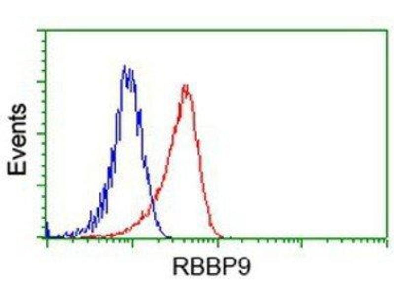 Flow Cytometry (FACS) image for anti-Retinoblastoma Binding Protein 9 (RBBP9) antibody (ABIN4349525)