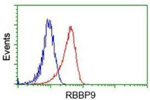 Flow Cytometry (FACS) image for anti-Retinoblastoma Binding Protein 9 (RBBP9) antibody (ABIN4349525)